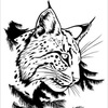 Ассоциация любителей Lynx Audio