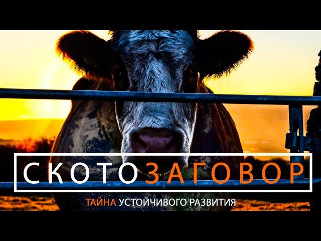 Документальный фильм Скотозаговор на русском русская озвучка русский перевод смотреть онлайн без регистрации