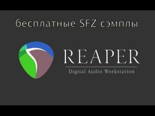 Reaper - работа с бесплатными сэмплами, основы Midi и аранжировки