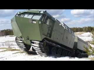 Вездеход ДТ 30П Витязь