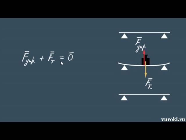 физика СИЛА УПРУГОСТИ закон Гука 7 класс Перышкин