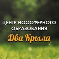 Логотип ЦЕНТР НООСФЕРНОГО ОБРАЗОВАНИЯ