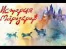 Мародеры, Снейп и остальные или кратко (не очень) о старшем поколении в Гарри Поттере
