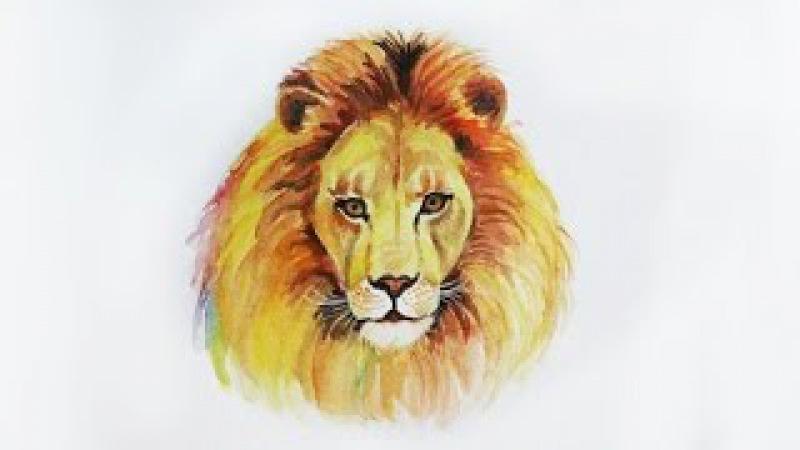 Уроки рисования. Как нарисовать льва акварелью Erich Krause how to draw a lion