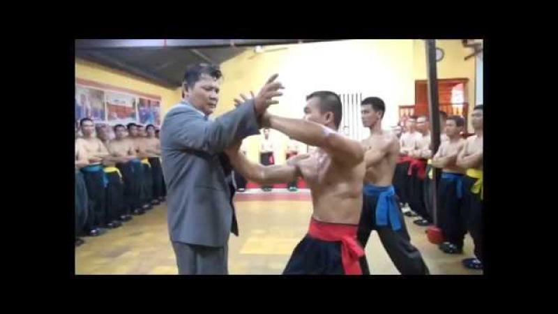 Kungfu Master Fighting Demonstration