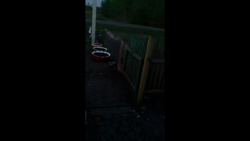 Софья Кулдошина Live