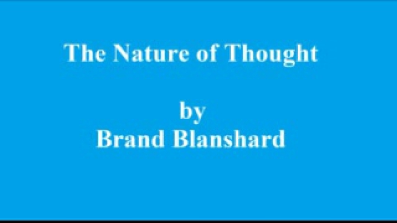 The Nature of Thought Part 15 p229 245