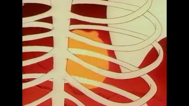 Конан: Искатель Приключений (1993) [s02e40 - Bones of Damballa]