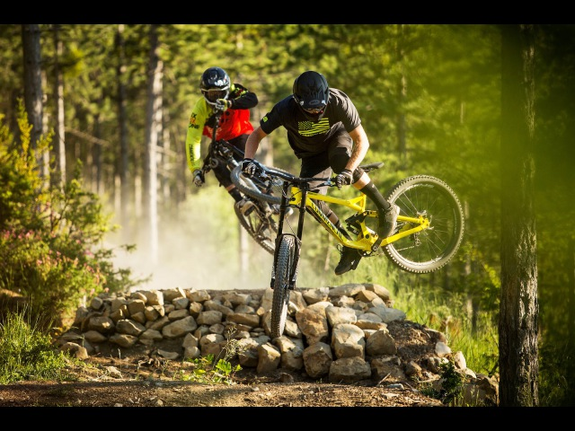 Downhill Freeride Tribute 2016: Vol. 6