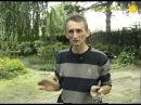 Главные правила ландшафтного дизайна садового участка
