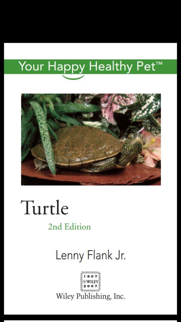 Turtle Your Happy Healthy Pet