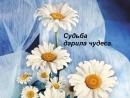 Xochu-pozdravit-s-dnem-rozhdeniya-i-v-etot-den-vam-pozhelat.mp4