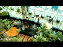 Arash feat Helena Dooset Daram FIlatov and Karas Extended Mix