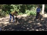 Один из способов отучить собаку реагировать на велосипедистов