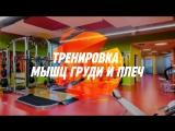 Тренировка мышц груди и плеч. Тренажерный зал в Челябинске