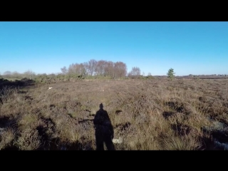 woodcock hunting Ireland 2016