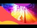 Qulinez &amp Aspyer feat. Glaceo - WCYD