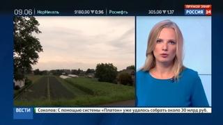 Новости на Россия 24 • В Европе спешно изымают тонны яиц, отравленных фипронилом