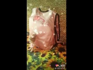 #Balerinchini Артикул 00.5.1 Рюкзак атлас с рисунком балерины