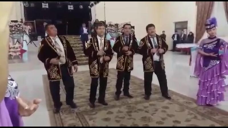 Тамадалар Жетисай Мактарал тойга кызмет Aman Boranbaev 87016034233