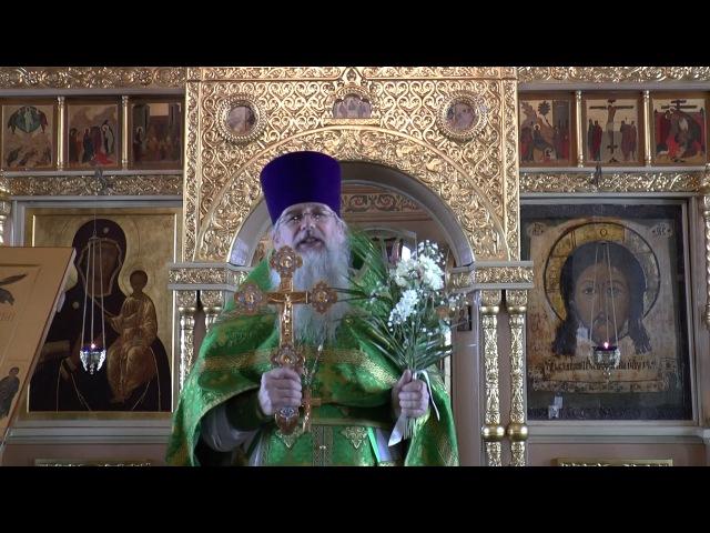 Вход Господень в Иерусалим (Вербное воскресение)