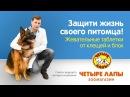 Советы ведущего ветеринара «Четыре Лапы». Жевательные таблетки от блох и клещей.