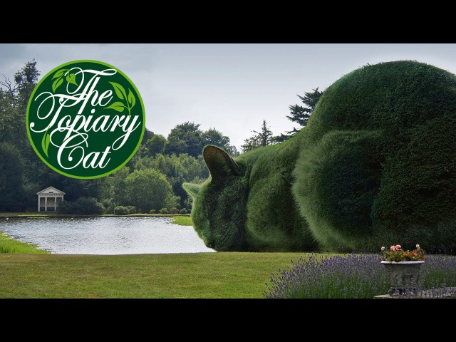 The Topiary Cat How It All Began