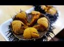 Japanese Street Food GIANT SEA URCHIN Uni Sashimi