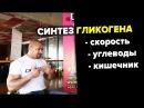 Синтез Гликогена Дмитрий Яковина ФЛЕКС СПОРТ