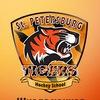 Хоккейная школа Tigers: тренировки для всех