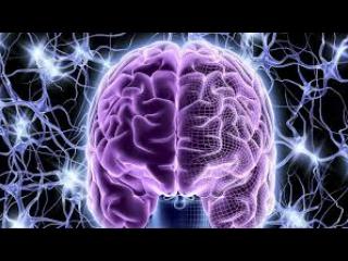 BBC Тайны мозга - Эмоции 2 серия