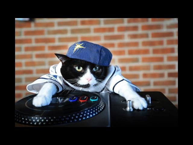 DJ Karabas Маньяки plays DJ Vekked