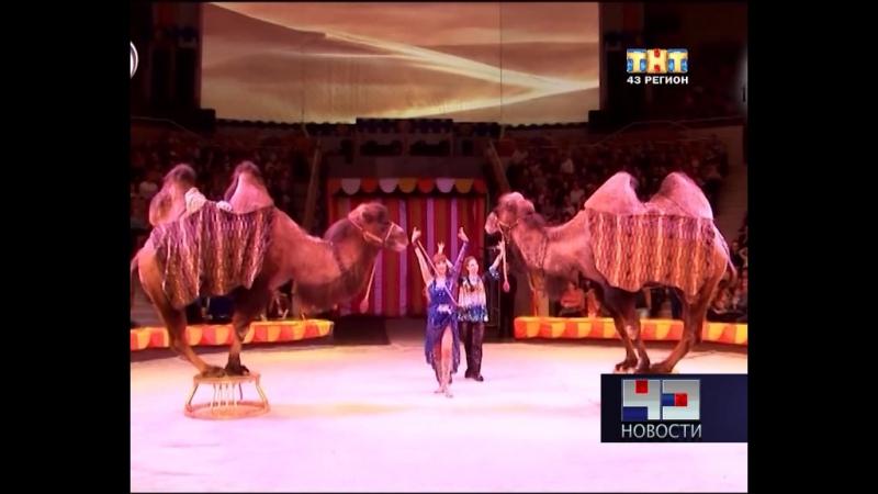 кировский цирк арлекино фото этом