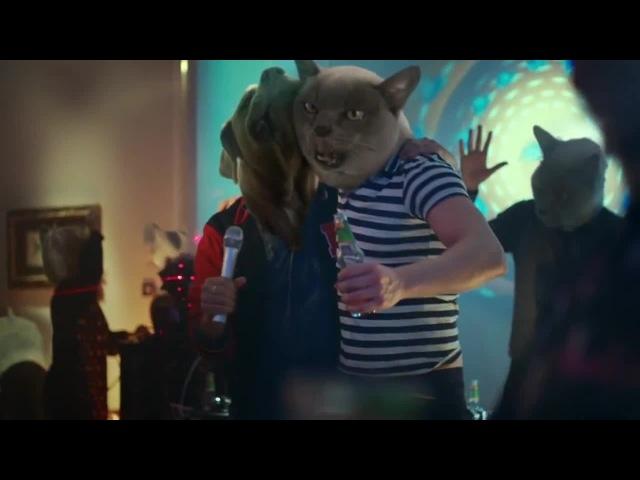 Animal Party Hard · coub коуб