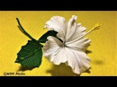 How to make easy origami hibiscus paper flower/diy crepe paper flower making fast /Craft tutorial