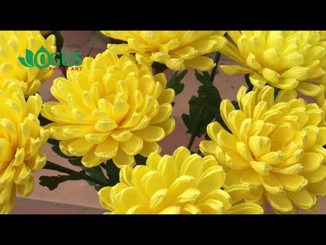 OGUS Hướng dẫn làm hoa cúc
