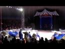 цирк братьев Гертнер (верблюды)