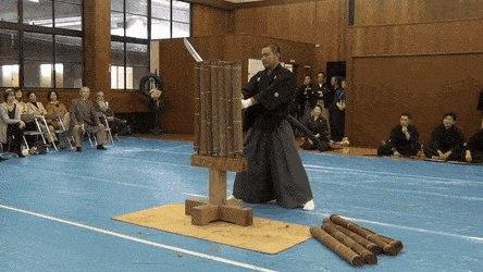明治神宮奉納 居合抜刀道 第八回全国大会(Meiji Shrine dedication) - Create, Discover and Share GIFs on Gfycat