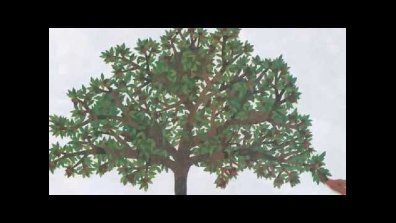 The Apple Pie Tree by Zoe Hall and Shari Halpern Grandma Annii's Storytime