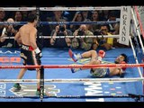 Knockout of the Year HD Boxing (1989-2014) Highlights
