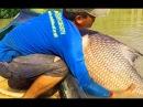 РЫБАКИ НЕ ПОНЯЛИ ЧТО ЭТО ЗА КАРП МОНСТР Вот это рыбалка 2018 ты не поверишь Очень много рыбы