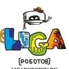 ligarobotov_vdk