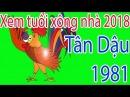Xem tuổi xông nhà 2018 tuổi Tân Dậu 1981 - Tết Nguyên Đáng 2018 - Tu vi 12 con giap
