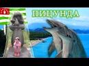 ВЛОГ Абхазия 2016 Пицунда ДЕЛЬФИНАРИЙ Дельфины в открытом море Отдых с детьми Развлечение для детей