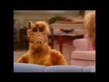 Alf Quote Season 2  Episode  14 На кухню