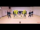 [Choreography Video] SEVENTEEN(세븐틴) - 박수(CLAP)