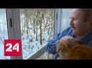 С видом на жизнь Документальный фильм Дмитрия Степанова Россия 24