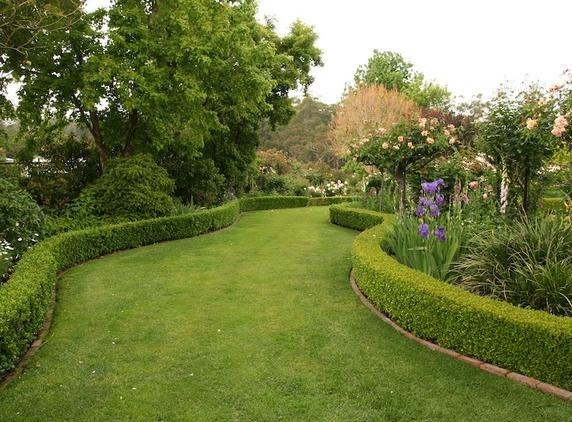 перспектива в саду