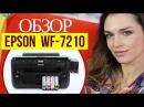 Принтер А3 формата Epson WF 7210 обзор с Дариной