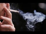 После этого видео вы точно бросите курить. Вся правда о том, как делают сигареты